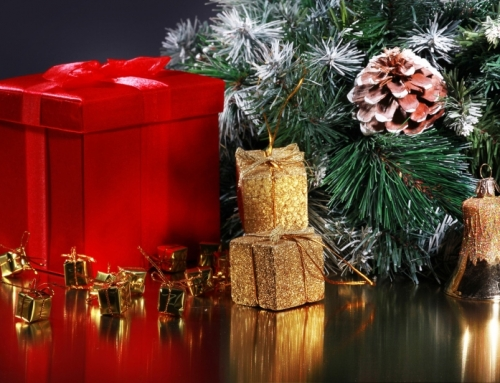 Merry Christmas and Happy New Year from the Entire VASEY Team!