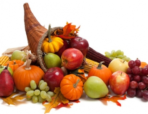 Happy Thanksgiving from the VASEY Team!